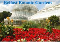 Belfast Botanic Gardens